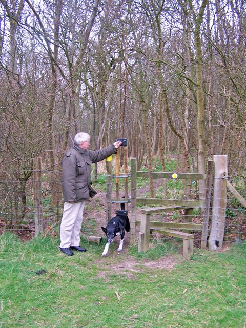 Shows the way a dog door works at the side of a stile