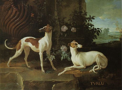 Misse and Turlu, Greyhounds belonging to Louis XV