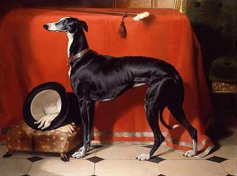 Eos, a favourite Greyhound of Prince Albert