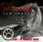 Savannah's Paw Tracks teaser for Oct 1